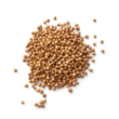 Coriander – Koriandermag illóolaj 15 ml - doTERRA