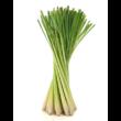 Lemongrass – Indiai citromfű illóolaj 15 ml - doTERRA
