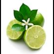Lime essential oil 15 ml - doTERRA