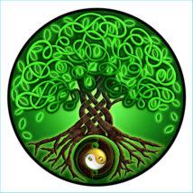 Mandala Ablakmatrica