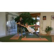 Hatha Yoga Teachers Training Program with distance learning