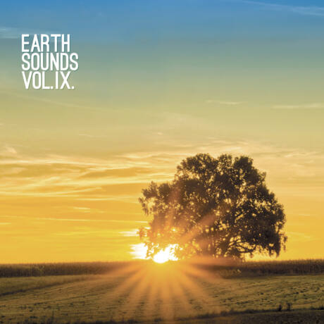 Earth Sounds Vol​.​IX.   CD