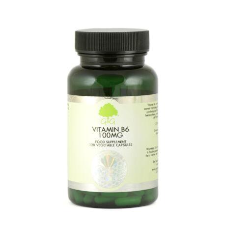 Vitamin B6 100mg - 120 Capsules – G&G