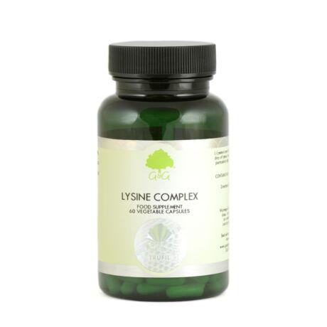 Lizin komplex C-vitaminnal és cinkkel 60 kapszula – G&G