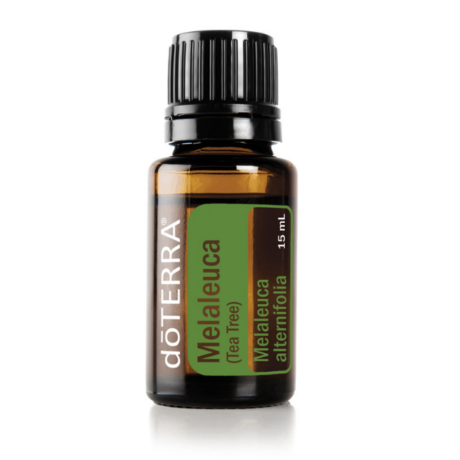 Melaleuca essential oil 15 ml - doTERRA