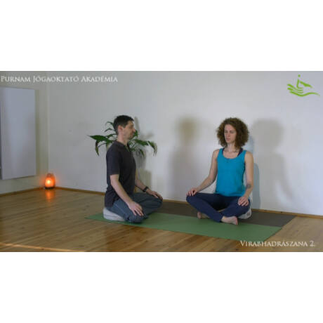 Meditation Teachers Training Program with distance learning